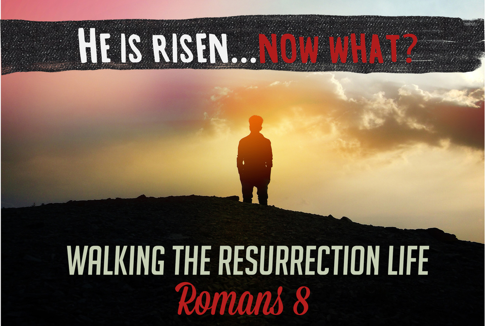 He is Risen Website Crop.jpg