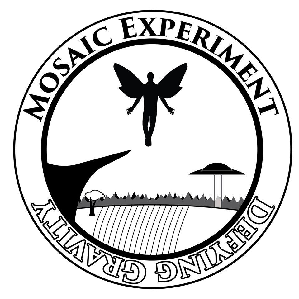 Mosaic Experiment 2015 logo