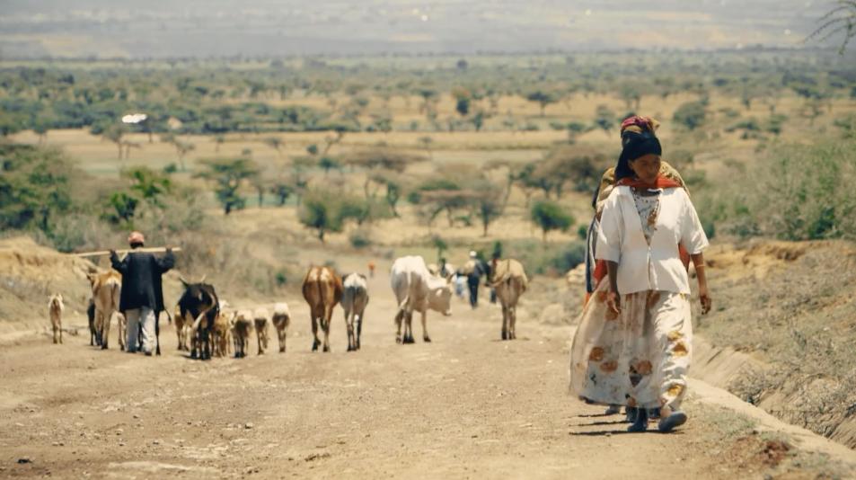 Stories of Change   Ethiopia: Hope School Heeraraa    See Story