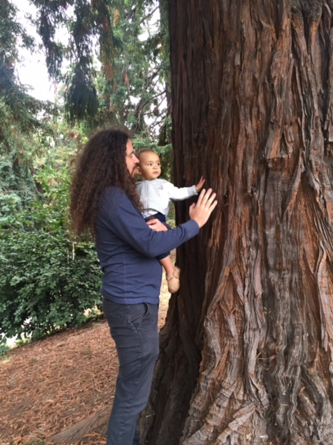 My husband and daughter touching a Redwood tree at the park near our house. We're home!