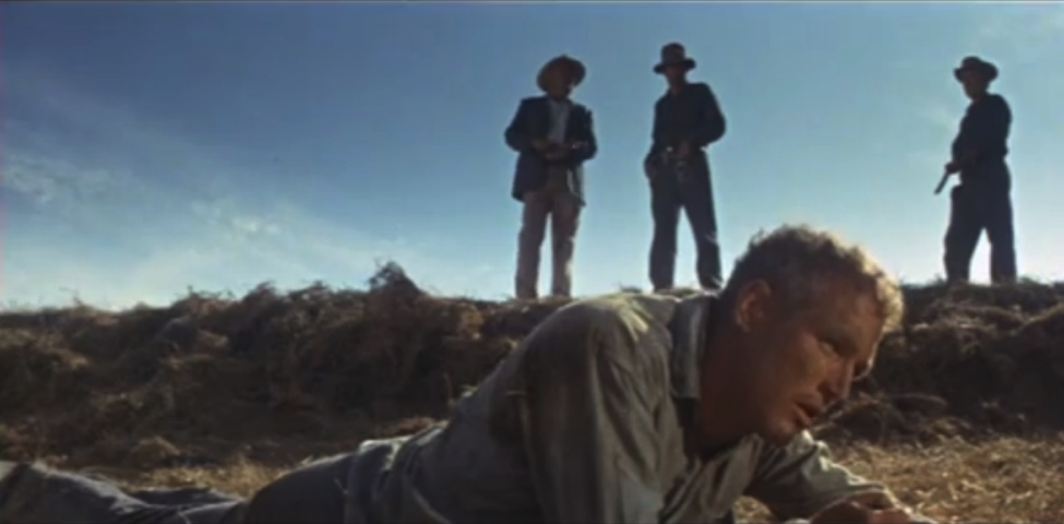 Figure 1: Cool Hand Luke (Warner Bros. Entertainment, 1967)