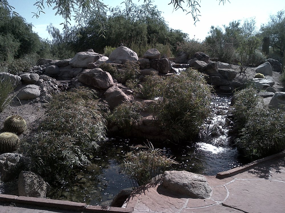 plenty of water with the gila river nearby - very zen vibe at this place - really hard to leave