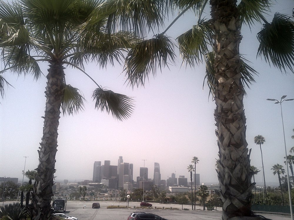 only in la - palm trees, baseball and a great skyline view