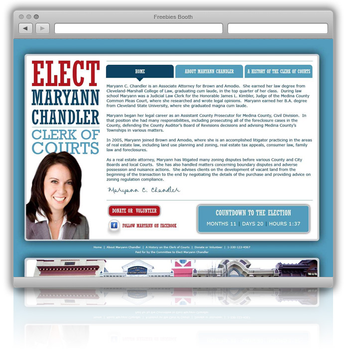 Maryann Chandler Election site