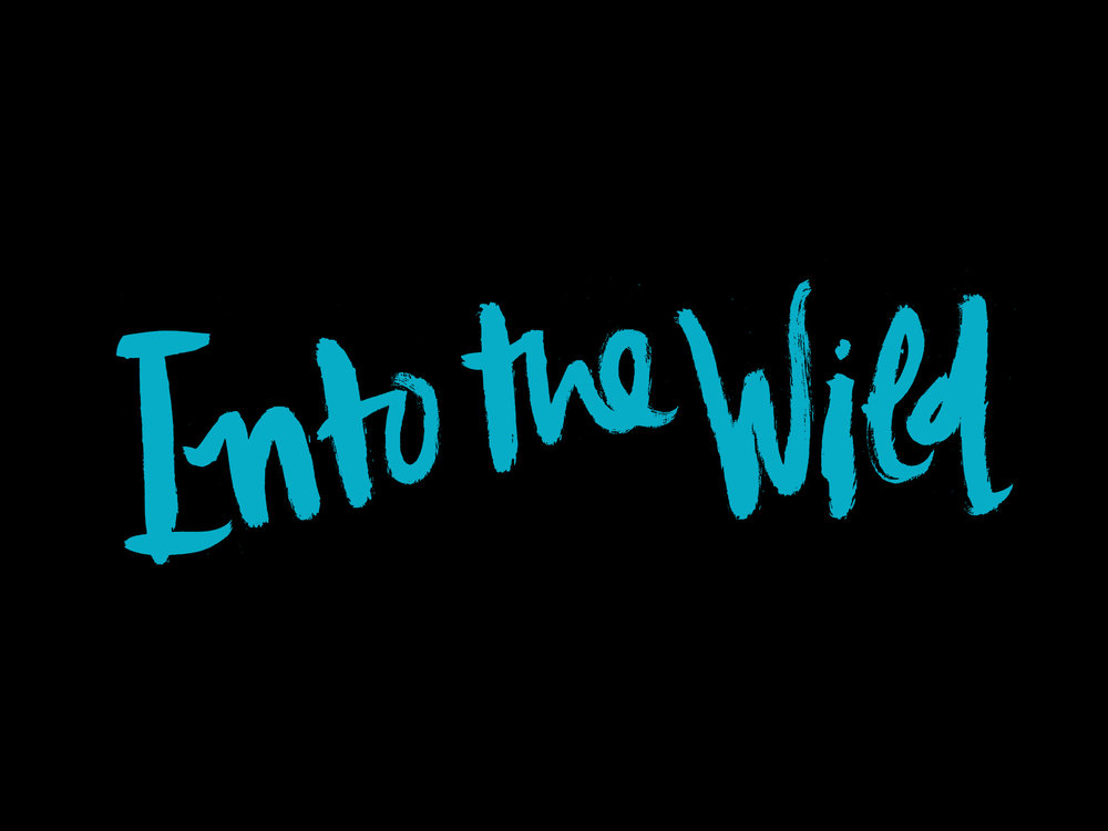 'Into the Wild'    Movie Poster  | Silkscreen