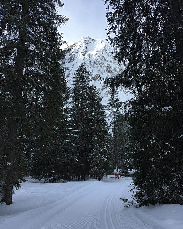 I ain't gonna lie - sleeping in an igloo left my feet numb, my blanket covered in frozen condensation. But after a massive Swiss breakfast we went back down to the head of the valley in Adelboden, strapped on snow shoes and went deep into the woods, crossing frozen rivers and following fox trails. A magical morning. #adventure #travel #travelgram #switzerland #snowshoes #igloo