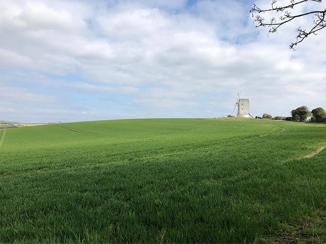 Glorious pre work wander to Lewes. A symphony of skylarks, wrens and coal tits #spring #southdowns #walking