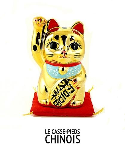 LE CASSE-PIEDS CHINOIS  - en recherche de production -  écrit par  Martin Fournier   Fiction - Long-métrage