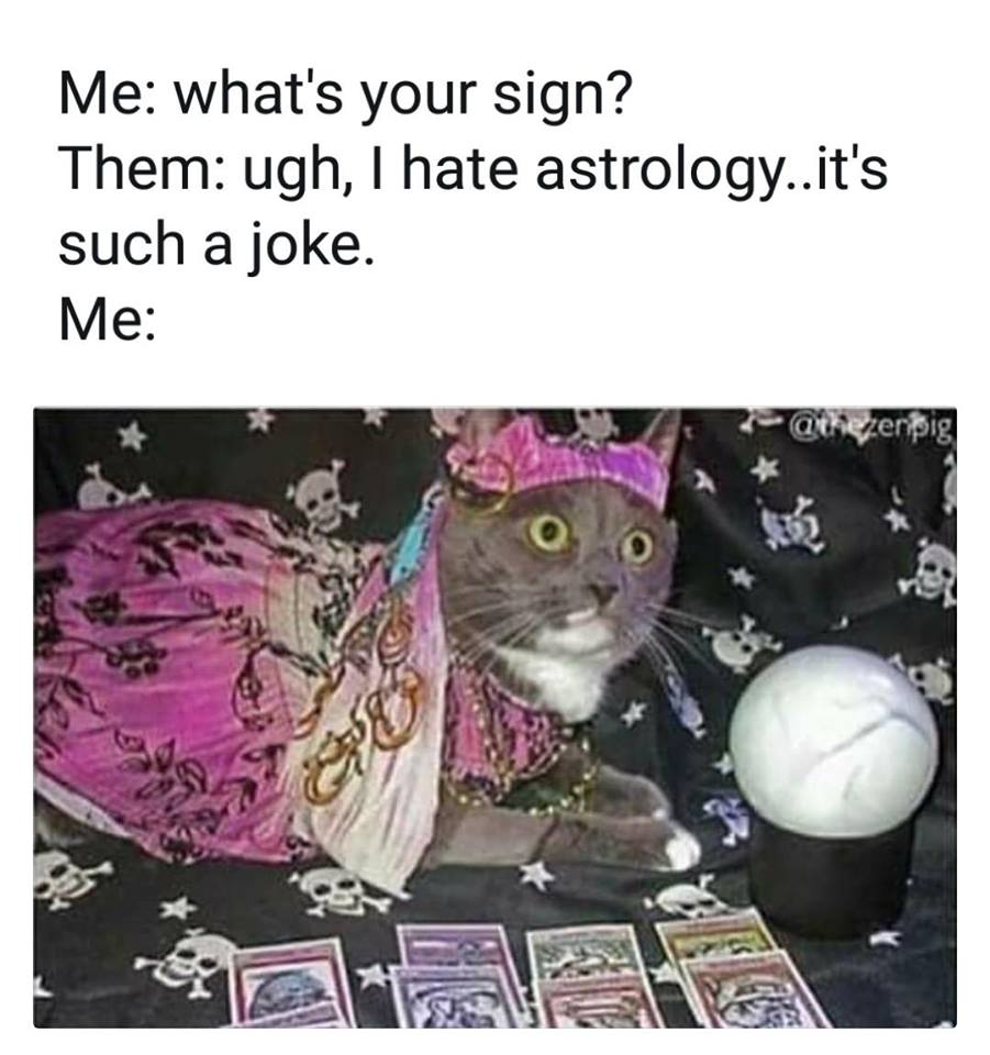 spirituality astrologer cat