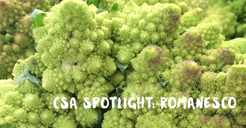 CSA Organic Romanesco