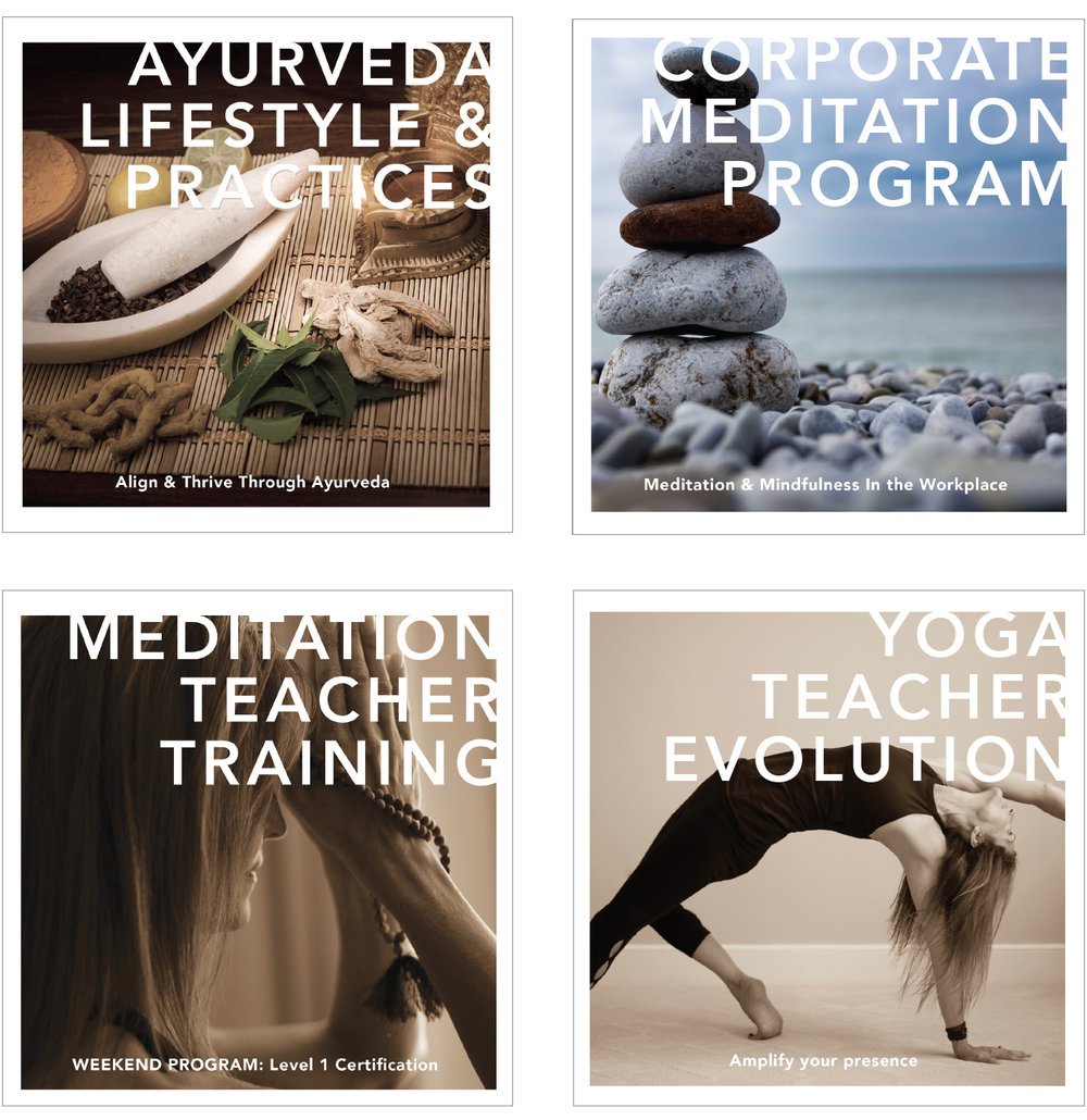 website yoga instructor graphic design print design brochures web design squarespace health coach