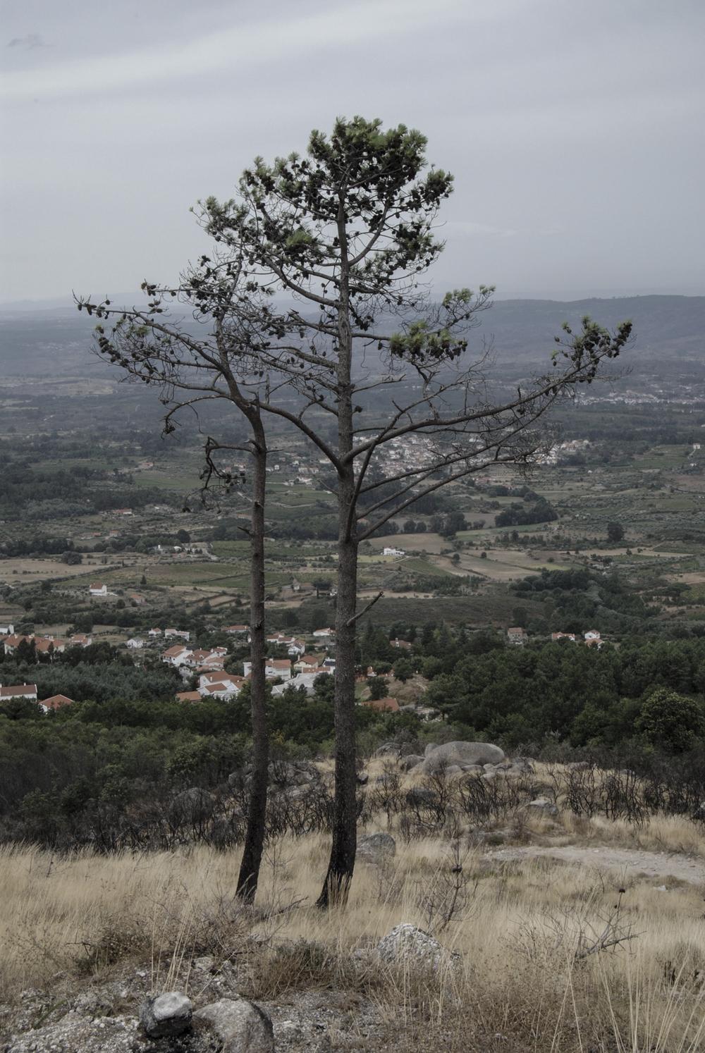 landscape_Gouveia_04.jpg