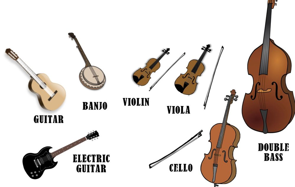 Some of the most known instruments in the string family