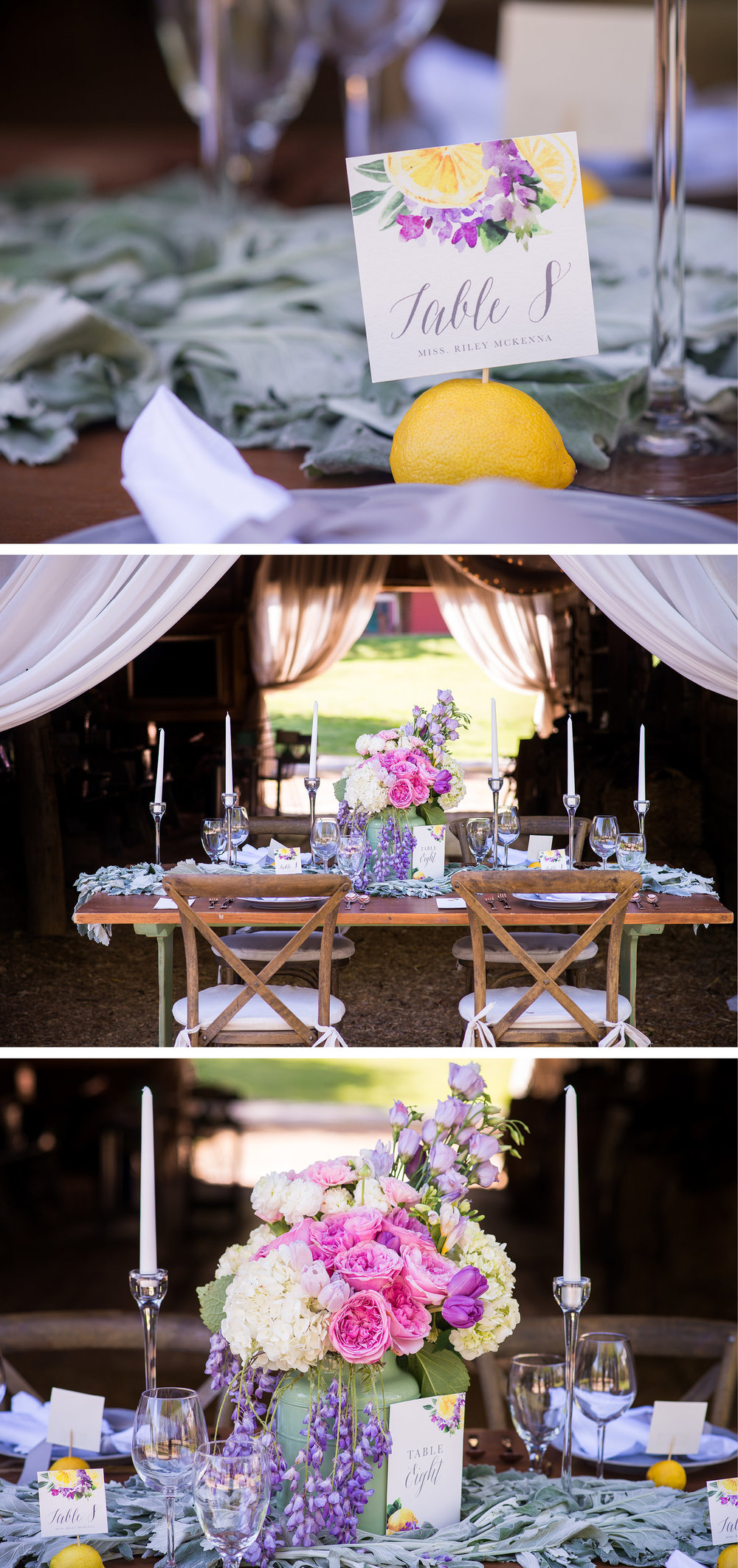 Charlotte-Wedding-Stationer-Lemon-and-Lavender-Styled-Shoot-Magnificent-Moments-Cami-Ann4.jpg