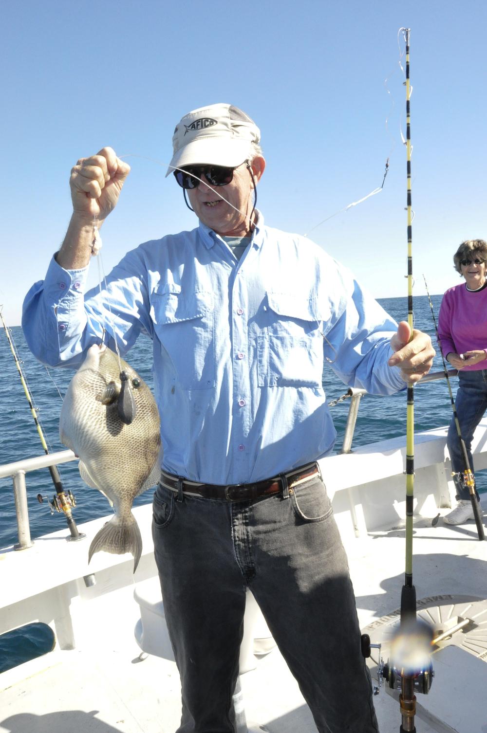 Trigger Fish.jpg