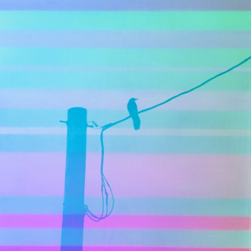 Bird on a wire + Striped acrylic painting