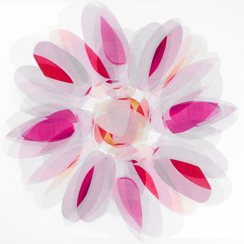 spirit-flower_42476415530_o.jpg