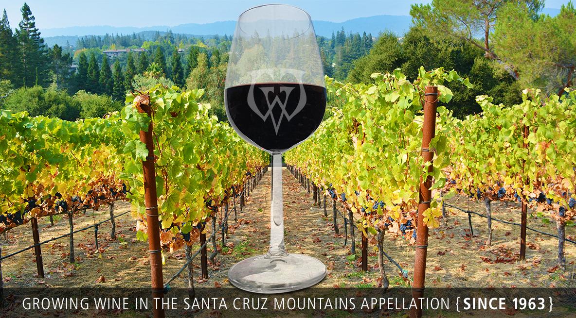 woodside vineyards experiance