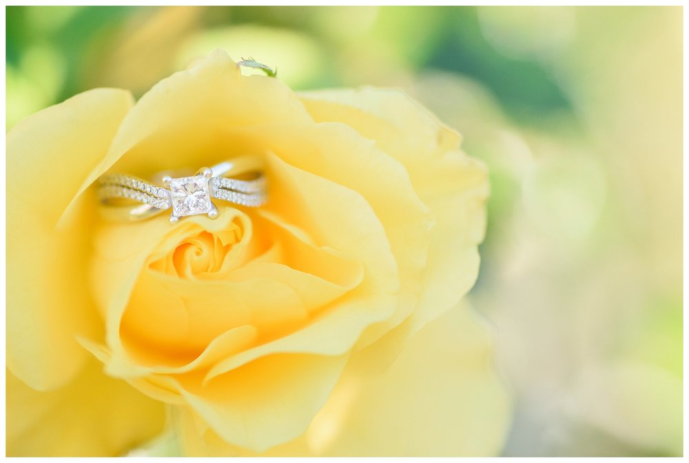 Las Cruces New Mexico Wedding Engagement Photographer_0014.jpg