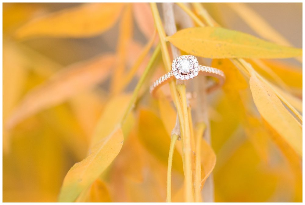 Deming Las Cruces New Mexico Wedding Engagement Photographer_0054.jpg