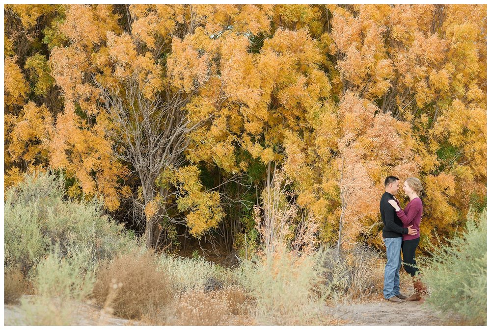 Deming Las Cruces New Mexico Wedding Engagement Photographer_0076.jpg