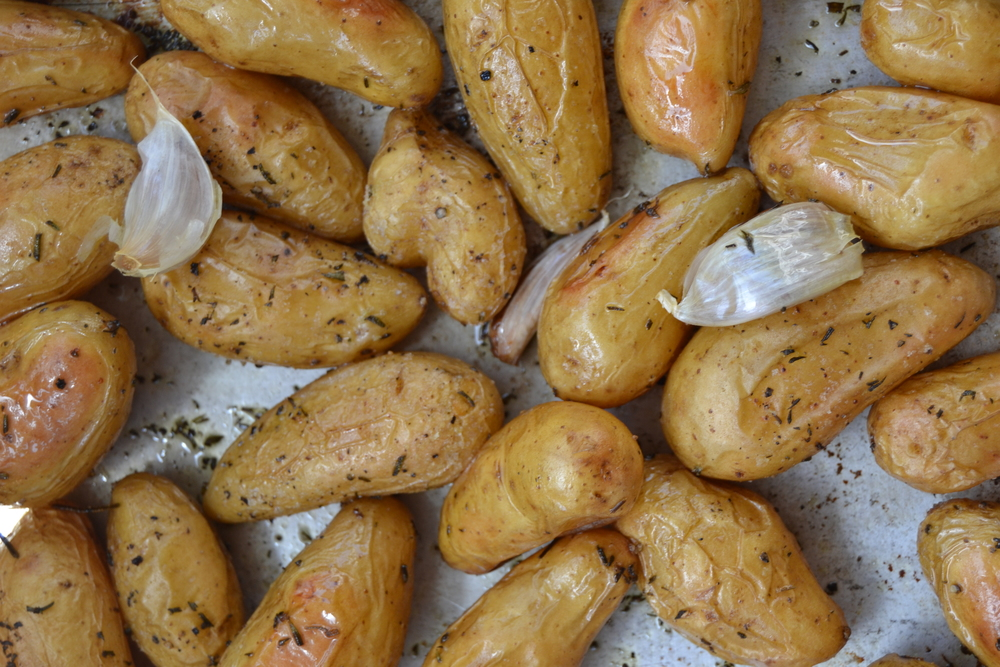 Roasted organic fingerling potatoes and garlic