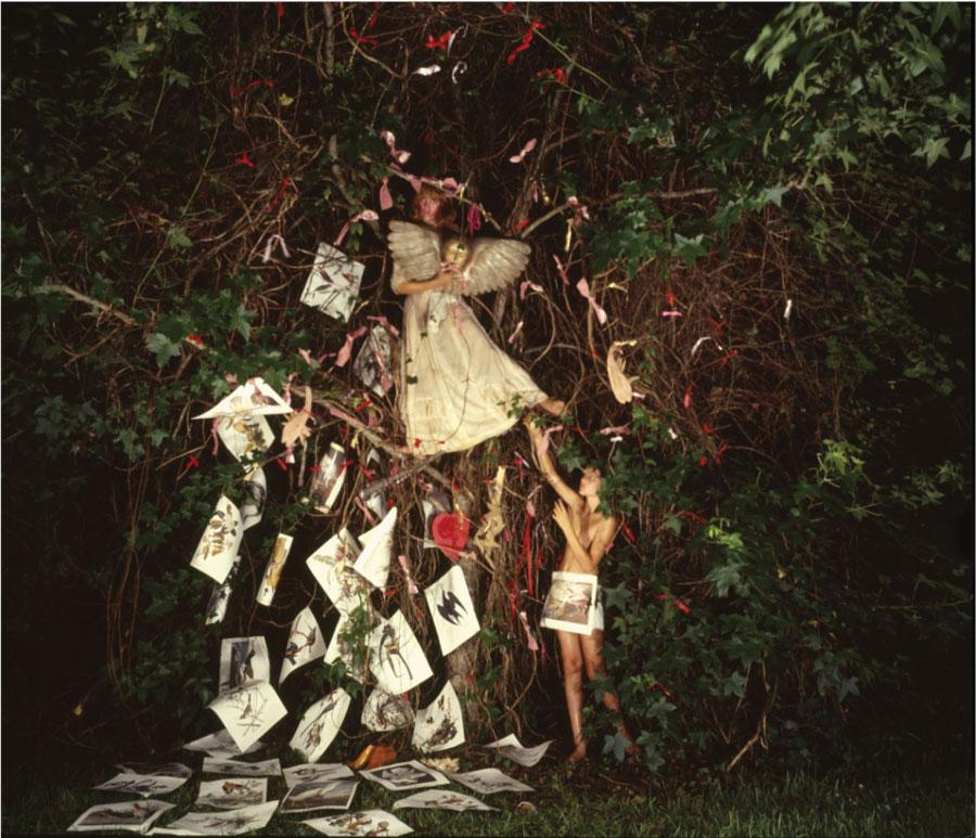 Linda Adele Goodine , Fallen Angel