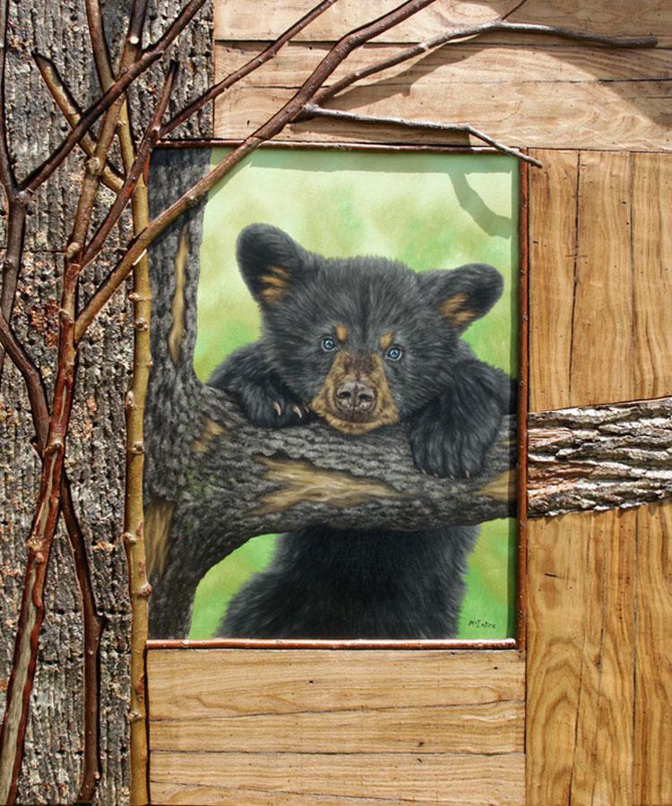 Wald frame_bear cub_6499_crop_SF.jpg