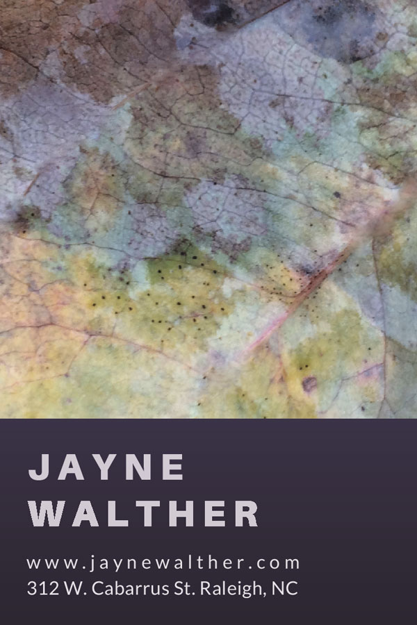 14v---Jayne-Walthers.jpg