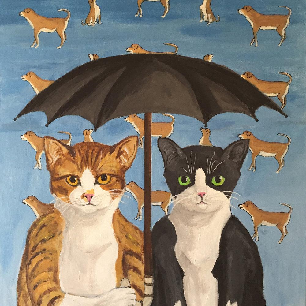 Tom Zarrilli,  It's Raining Dogs