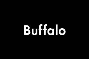 NY - Buffalo.jpg