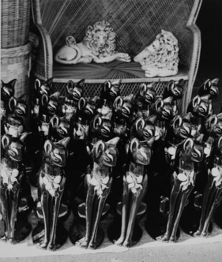 Edna Bullock, Cats, San Jose Flea Market, 1982-1986, gelatin silver print, Gift of the Edna J. Bullock Trust, 1998.020.034