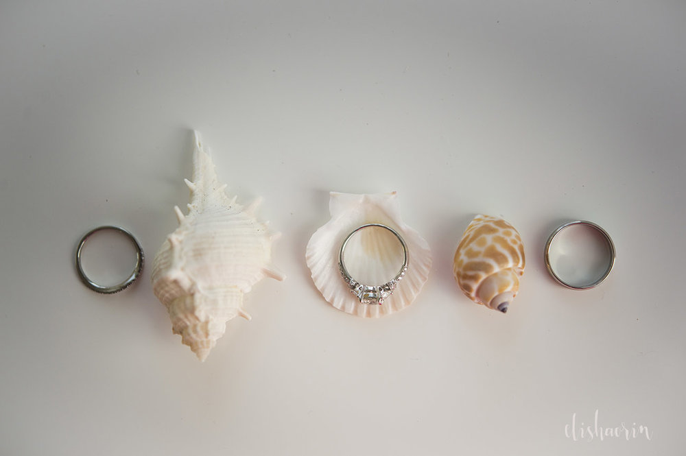 wedding-rings-with-sea-shells-taken-in-st-john-by-elisha-orin-photography