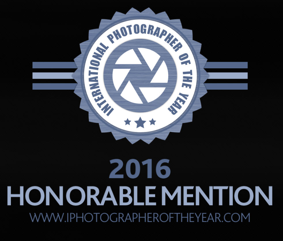 Badge-IPOTY-2016.jpg