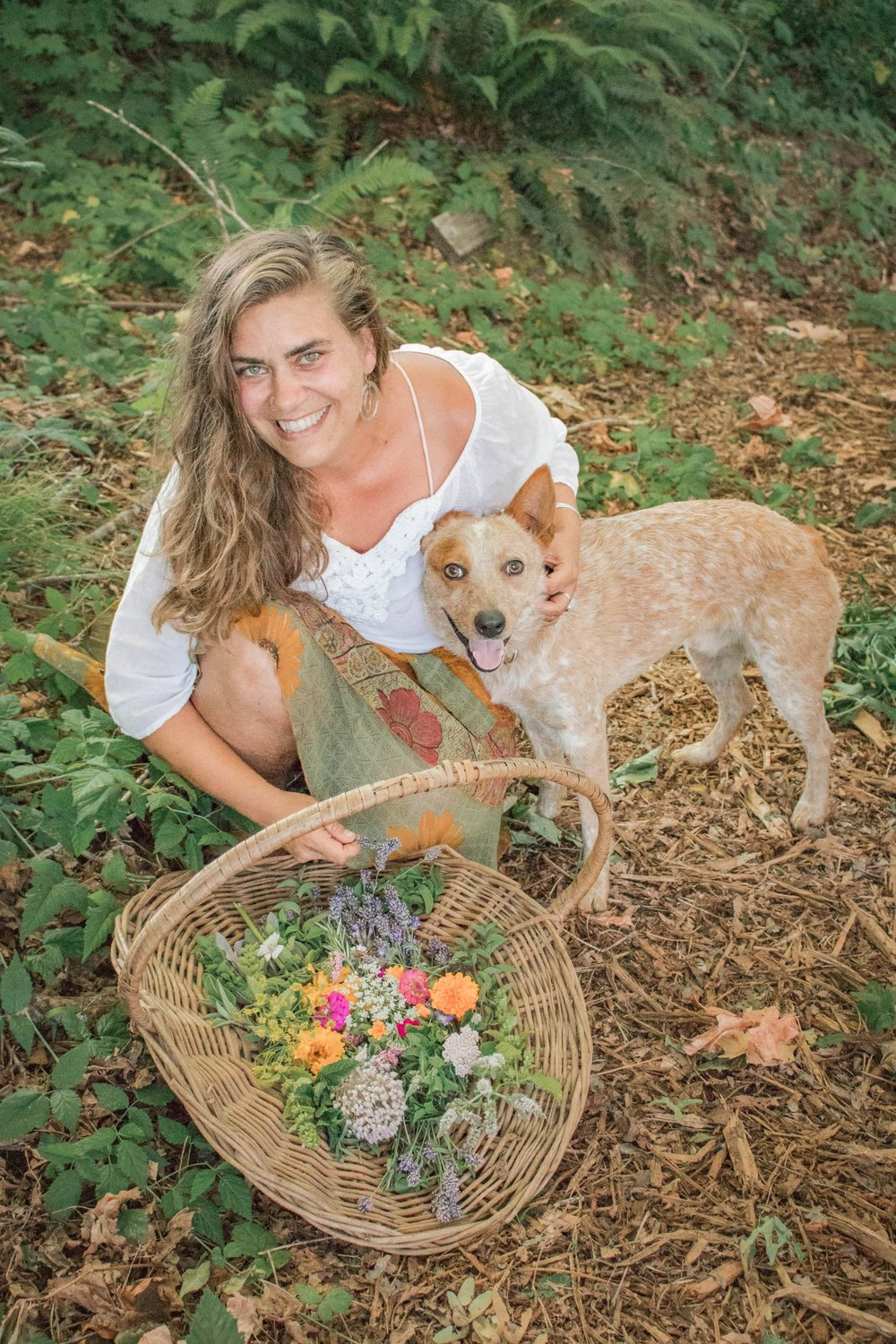 Harvesting - Wildcrafting is a passion of Dr. Alicia's. Pictured here is one of her dogs, Trapper Keeper, who accompanies Dr. Alicia while she works around the farm.