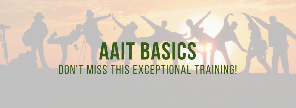 AAIT BASICS (1).png