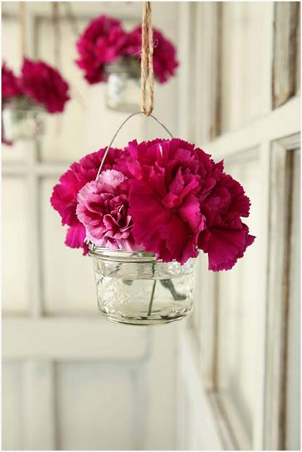 carnations 3