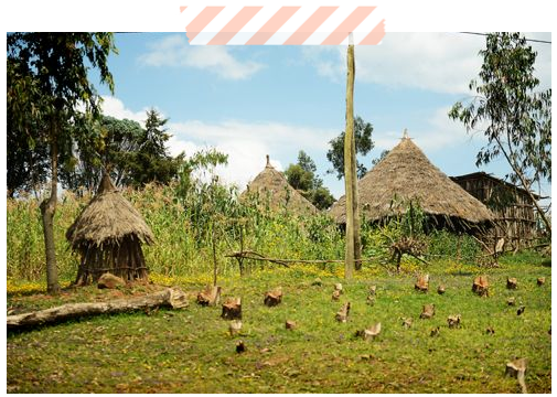 ethiopia huts