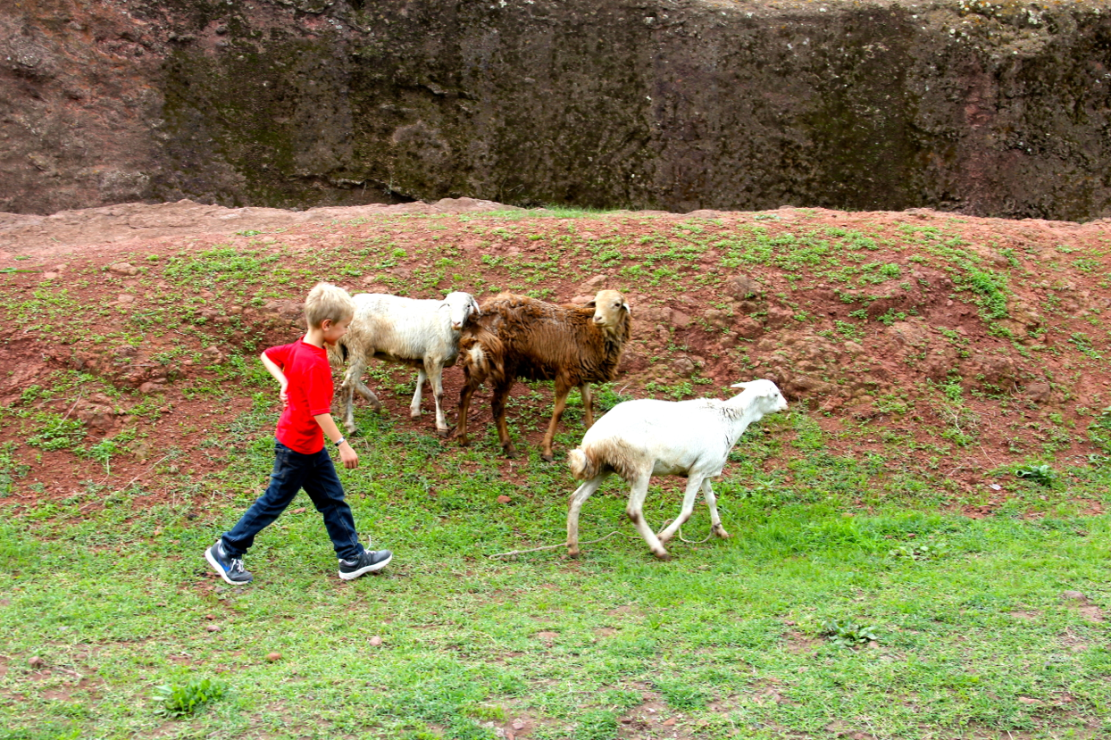 anton in lalibela ethiopia 2
