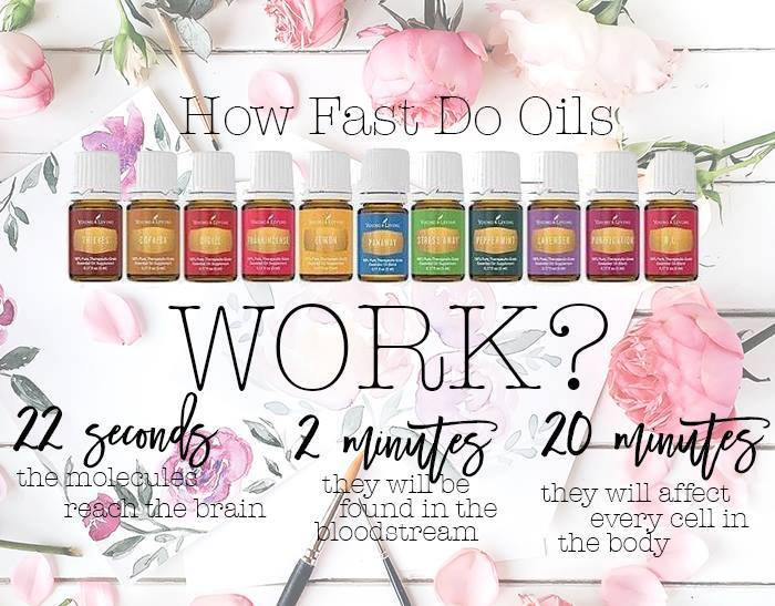 how fast do oils work?.jpg