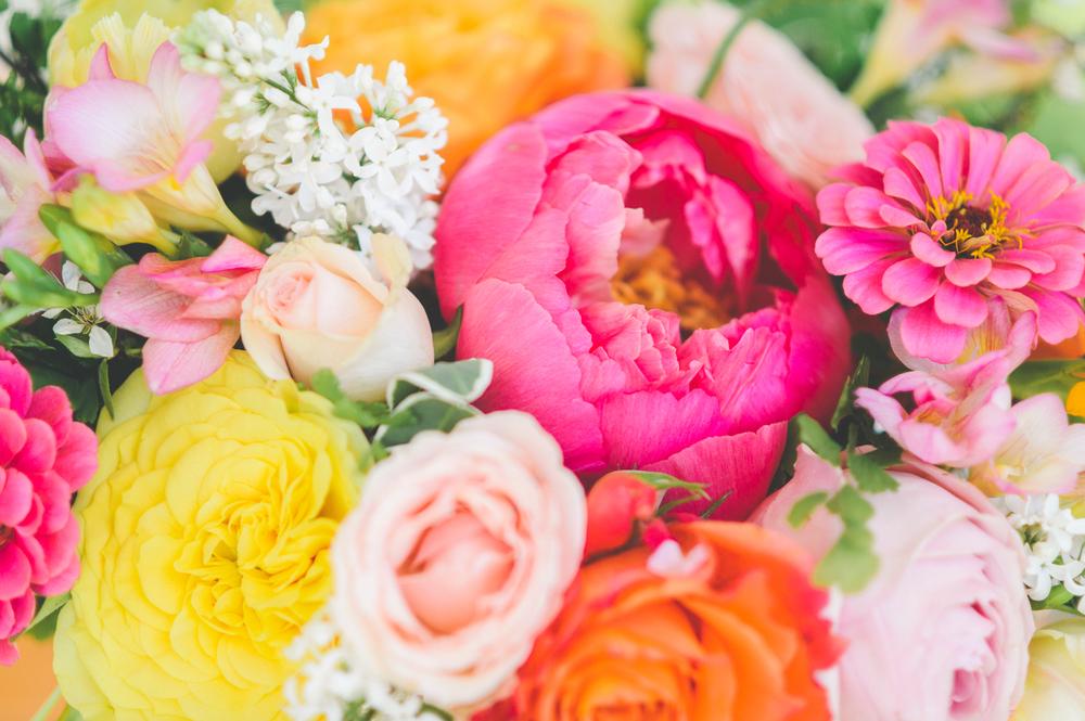 love in bloom - 0007.jpg