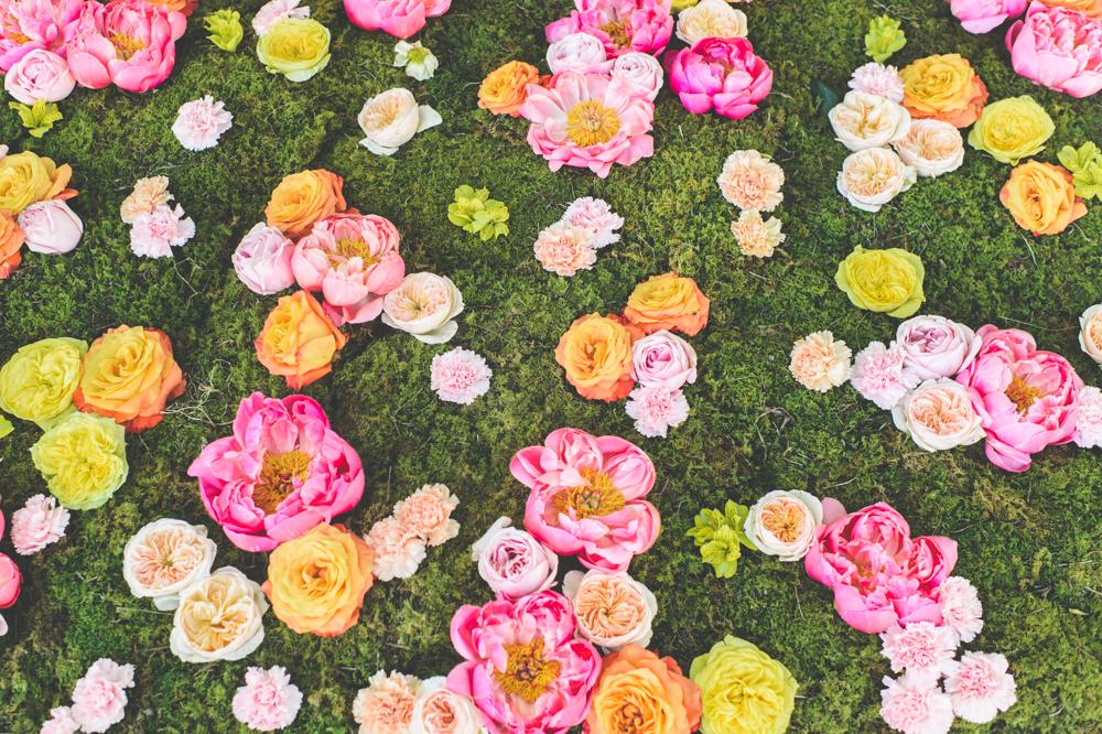 love in bloom - 0044.jpg
