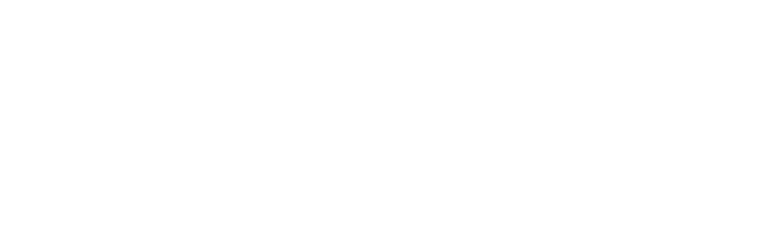 RALLY Sports Group