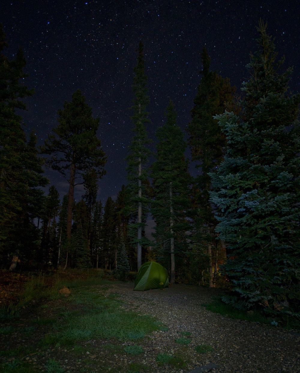 Under Canvas - Kaibab Plateau, Arizona