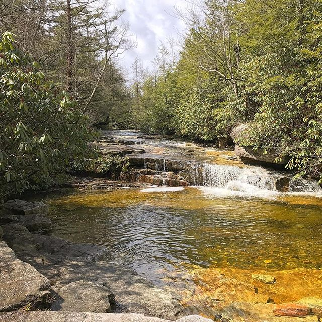 Took this one on a nice weekend hike at Stony Kill Falls on the Hudson River. . . . #pic#picoftheday#pictures#travel#travelblogger#travelgram#traveller#traveltheworld#travelphoto#hike#photography#instagood#weekend#instadaily#photooftheday#daily#traveling#forest#stream#igtravel#hudsonriver#tourism#stonykillfalls#daily#me#fun#dailyphoto#inspiration#shotoniphone#traveladdict