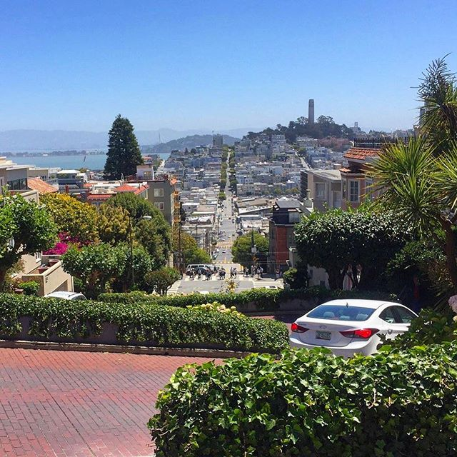 The San Francisco skyline from the top of the famed Lombard Street! 🏙 . . . #pic#picoftheday#pictures#travel#travelblogger#travelgram#traveller#traveltheworld#travelphoto#photo#photography#instagood#instaphoto#instadaily#photooftheday#daily#traveling#follow#lombardstreet#igtravel#l4l#tourism#sanfrancisco#daily#california#fun#dailyphoto#inspiration#shotoniphone#traveladdict