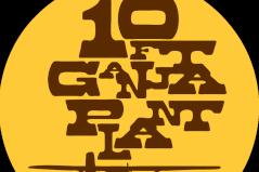 10FT GANJA PLANT