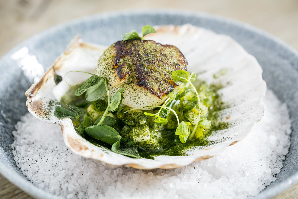 Scallop seared green salsa, lime & wakame dust (6).jpg