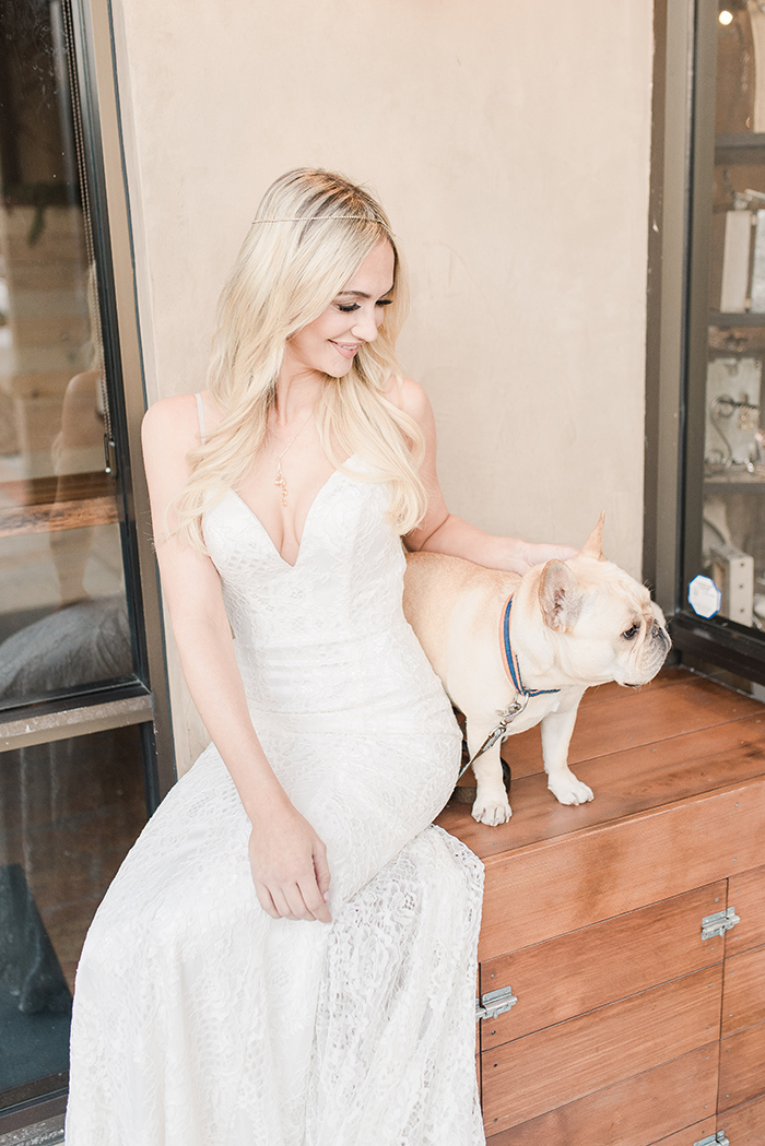 Bride with a French Bulldog Puppy