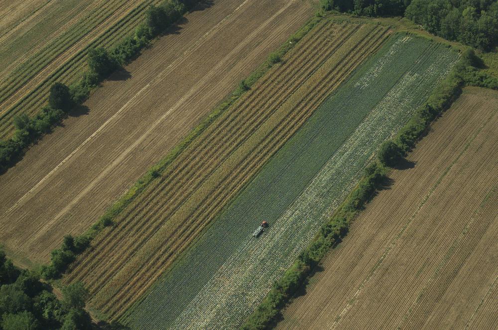 Farming, Quebec